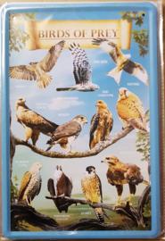 Metaalplaat roofvogels