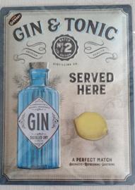 Metaalplaat Gin & Tonic 30x40cm in reliëf
