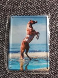 Metaalplaatje paard 8 x 11 cm