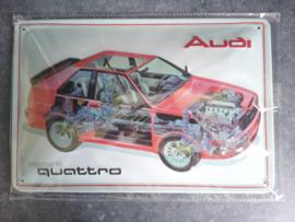 Metaalplaat Audi Sport Quattro