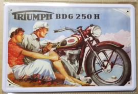 Metaalplaat Triumph BDG 250 H
