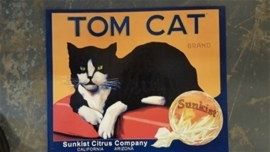 Metaalplaat Tom Cat - Sunkist