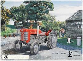 Metaalplaat Massey - Ferguson 65