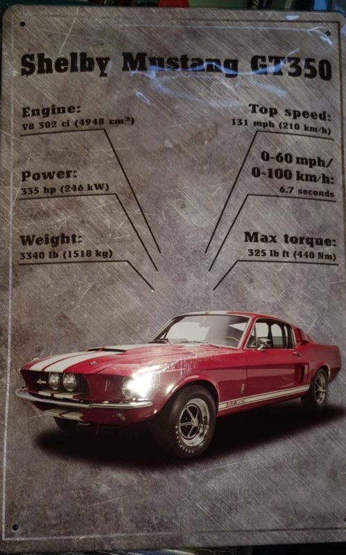 Metaalplaat Ford Shelby Mustang GT350