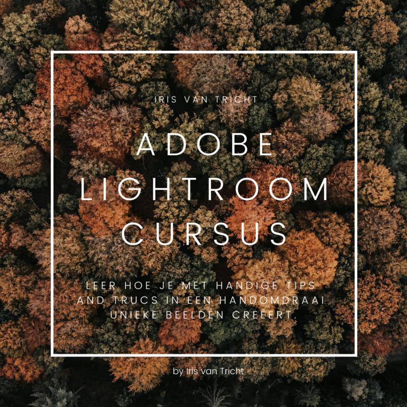 Iris van Tricht Academy - Adobe Lightroom cursus
