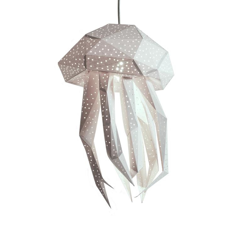 Lantern Jellyfish wit