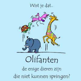 Wist je dat...Olifant