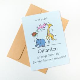 Wist je dat...postkaart Olifant