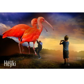 Surrealisme - Orange - Bigbirds - XL