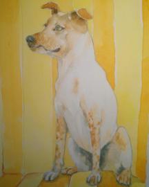 Huisdier portret in aquarel