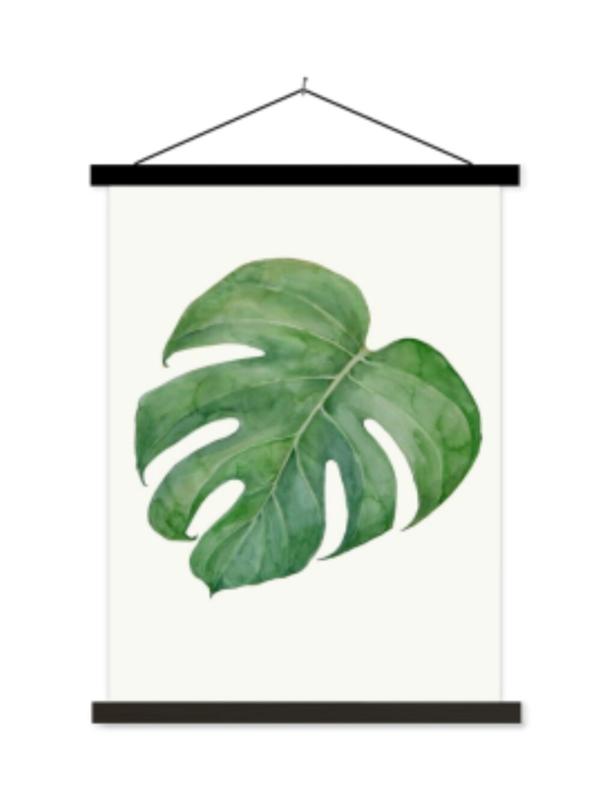 Schoolplaat Philodendron I