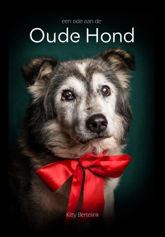 Een ode aan de Oude Hond