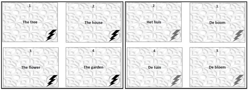 Sjablonen  voor maken eigen flashcards