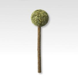 Catnip Lollypop