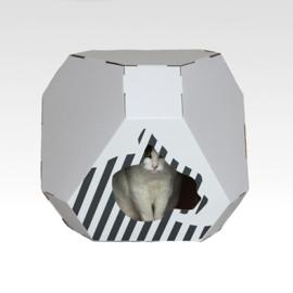 Cardboard - Mia House