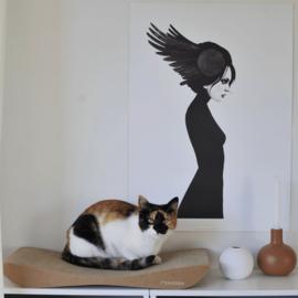 Cardboard - Tobi Brown