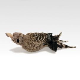 Tabby Tijger - Bird Woodpecker