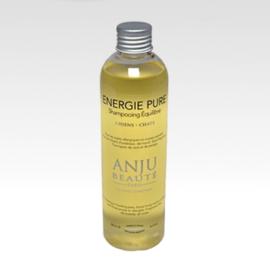 Anju-Beauté Energie Pure