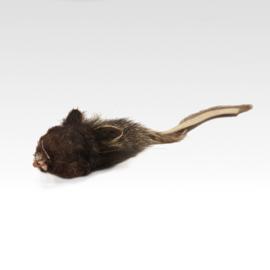 Tabby Tijger - Mouse YakiRat Buffalo