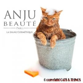 Anju-Beauté starter Texture-Soft