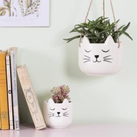 Cat's Whiskers Plantenpot