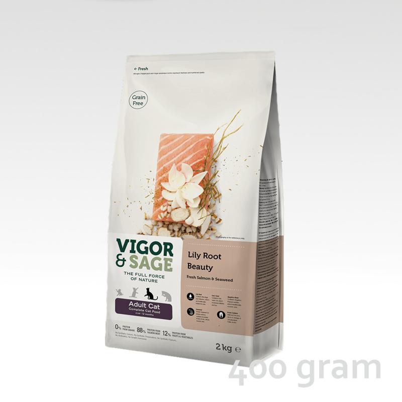 Vigor & Sage Lily Root Beauty