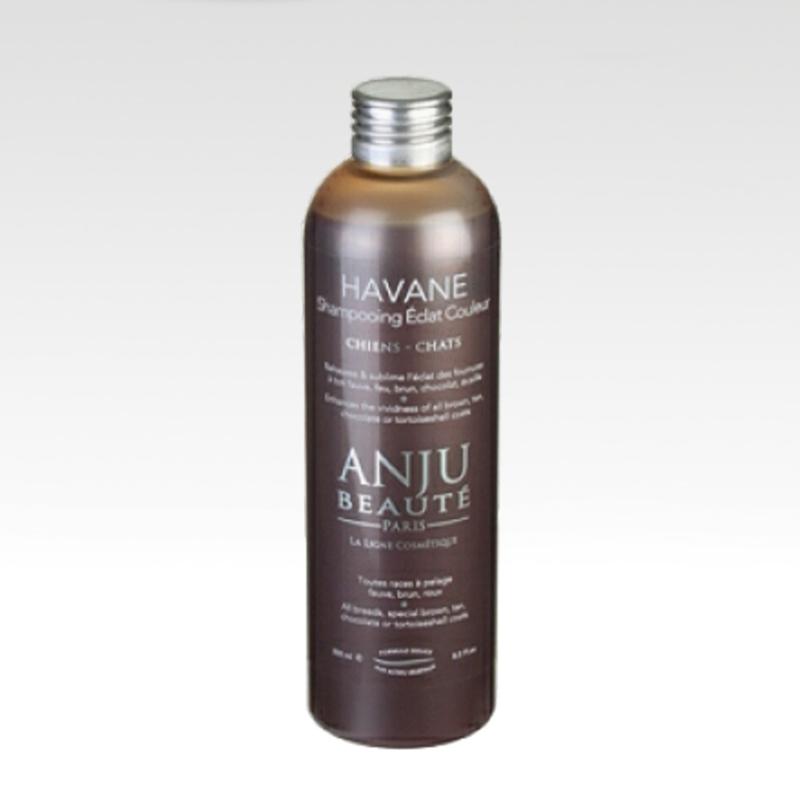 Anju-Beauté Havane