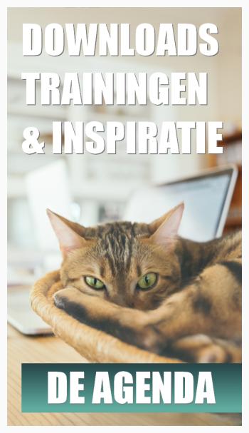 Penningen voor je kat
