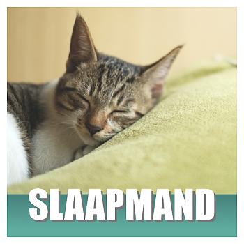 Klik hier voor Kattenmandjes en Kattenkussens van Cats & Things