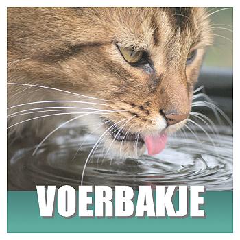 Klik hier voor Katten voerbakjes en Drinkfonteinen van Cats & Things