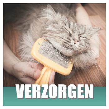 Klik hier voor Kattenshampoos en Vachtverzorging van Cats & Things