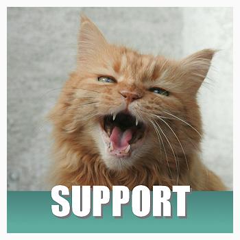 Klik hier voor extra ondersteuning van je kat en anti-stress middelen