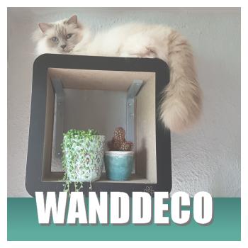 Klik hier voor je katten wanddecoratie