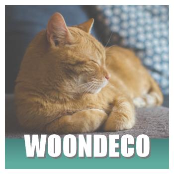 Klik hier voor zacht kattenspul om je huis te decoreren