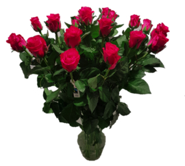 Roos - roze - 10 stuks