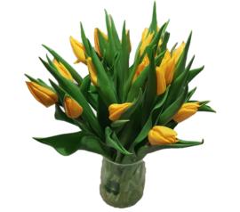 Tulp - geel - 20 stuks