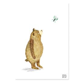 poster beer met vlinder -A4