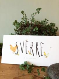 Geboortekaartje Sverre! Kip en boerderijdieren