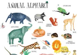 ABC poster TEXTIEL dieren alfabet - 50 x 65 cm