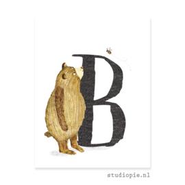 de B van BEER | letterkaartje