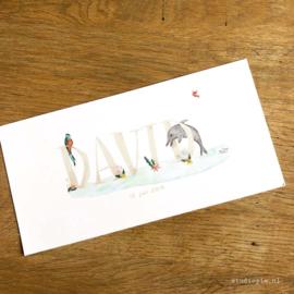 Tropisch geboortekaartje David, tropische vogel, dolfijn en plantjes