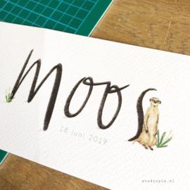 Geboortekaartje van Moos! Eigenwijs kaartje met een stokstaartje