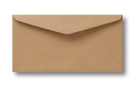 Lichtbruine kraft envelop  22 x 11 cm.