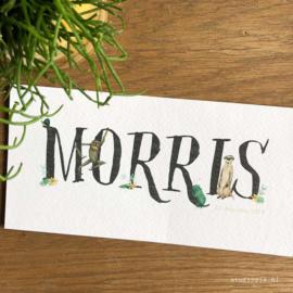 Geboortekaartje Morris, stokstaartje, kameleon, bloemen en aapje