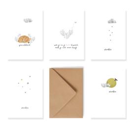 Set van 5 rouw/condoleance kaartjes met enveloppen