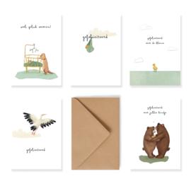 Set van 5 geboorte felicitatie kaartjes met enveloppen