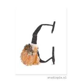 de C van CAVIA | letterkaartje