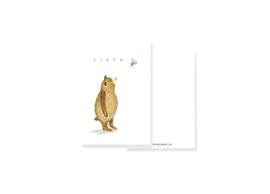 klein kaartje Liefs, met beer en vlinder | per 5