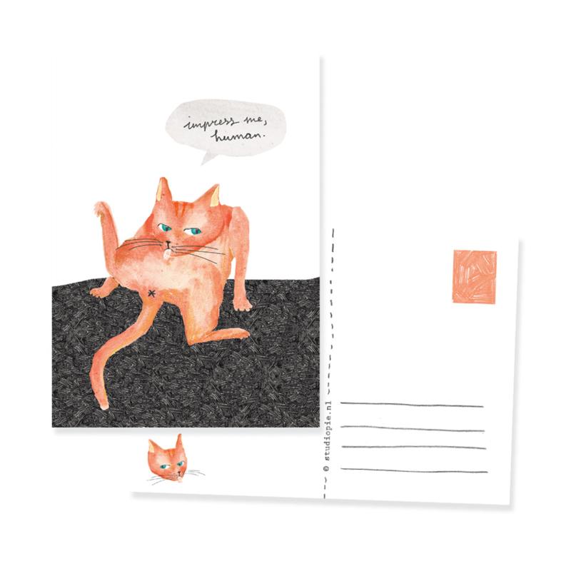 Ansichtkaartje met chagerijnige kat 'Impress me, human'
