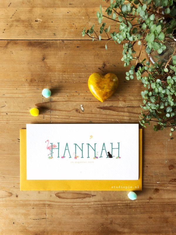 Geboortekaartje Hannah ! Zeegroen kaartje met ooievaar en zwarte kat